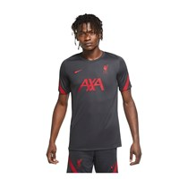 Nike Liverpool FC 2020/21 Short Sleeve Strike Top - Adult - Anthracite/Gym Red