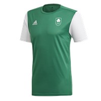 adidas Club Team Ireland Estro 19 Jersey - Youth - Green
