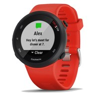 Garmin Forerunner 45 Running Watch - Lava Red