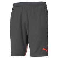 Puma Individual Cup Training Shorts - Mens - Asphalt/Red Blast
