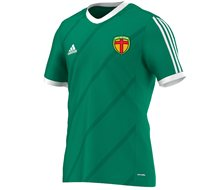 Adidas County Donegal GAA Tabela 14 Tee - Youth - Green
