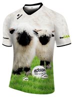 Mc Keever Ewe Rule 2016 Ploughing Championships Jersey - Adult