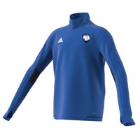 adidas County Waterford GAA Tiro 17 Training Top - Youth - Royal/Navy/White
