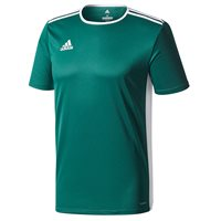 adidas Entrada 18 Jersey - Adult - Collegiate Green/White