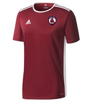 adidas County Galway GAA Entrada 18 Jersey - Youth - Maroon/White