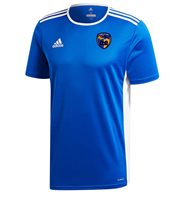 adidas County Longford GAA Entrada 18 Jersey - Youth - Bold Blue/White