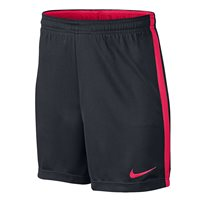 Nike Dry Academy Shorts - Youth - Black/Crimson