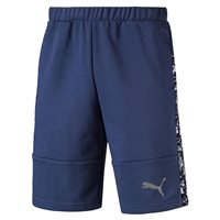 Puma Active Hero 10 Inch Shorts - Mens - Sargasso Sea