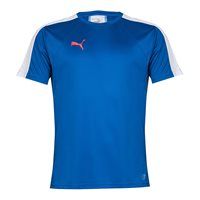 Puma IT EvoTRG Training Tee - Mens -True Blue/Bright Plasma