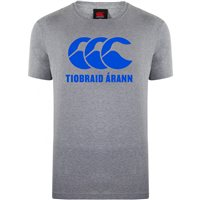 Canterbury County Tipperary Motif Tee - Adult - Grey/Blue