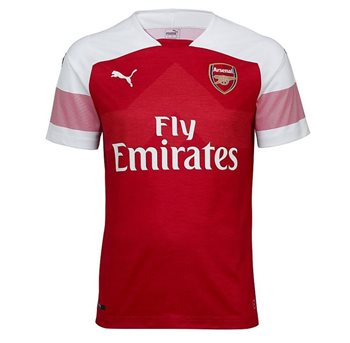 e6ed2c154 Puma Arsenal FC 2018 19 Short Sleeve Home Jersey - Adult - Chilli Pepper  Heather